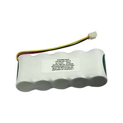 Panametrics PT878 Replacement battery
