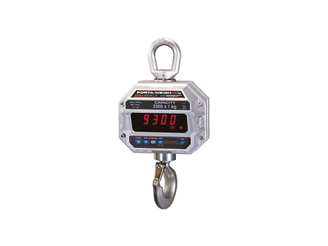 Rice Lake MSI-9300 Port-A-Weigh Plus Crane Scale
