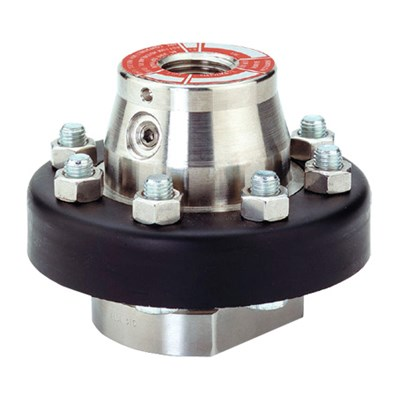 Ashcroft Type 100 Series Diaphragm Seals