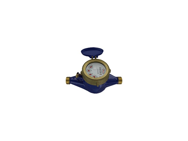 Dwyer WM2 Water Meter