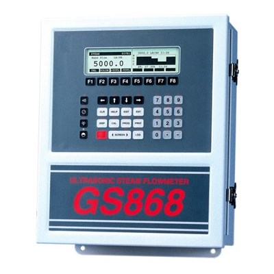 Panametrics GS868 Ultrasonic Flow Meter