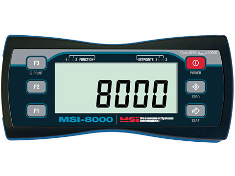 Rice Lake MSI-8000 RF Remote Display